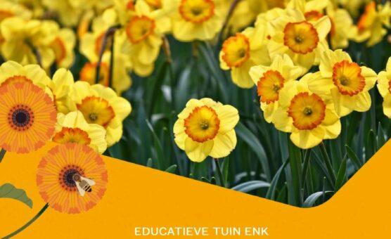 Lentekriebels op educatieve tuin De Enk